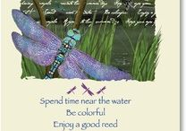 Dragonfly Magick / by Lilac Moon Wicked Gifts