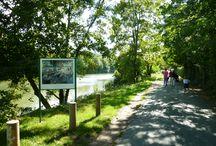 Balades au bord de l'eau / Suivez les pas des peintres impressionnistes et découvrez les paysages de leurs plus célèbres toiles, Monet et La Grenouillère, Renoir et le Déjeuner des Canotiers. L'été embarquez pour une croisière sur la Seine !