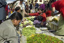 TravelMoodz - Local markets / Local markets around the world