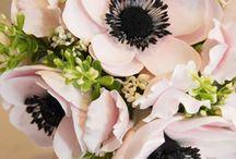 Bouquets - compositions/Csokrok-kompozíciók