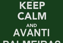Palmeiras FC. ♡♡
