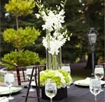 Flowers / Find your ideal bouquet or centerpiece with our flower board.