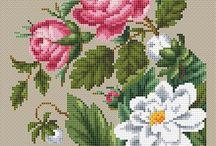 Ksz virágok