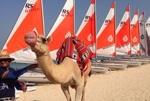 Sailing / Dinghy & catamaran sailing. Hire with or without tuition.