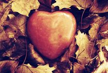 Heart Matters / Love is everywhere.