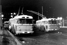 Trams and buses