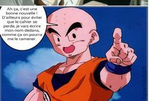 blague histoir