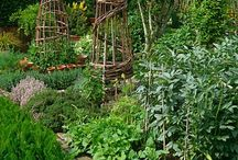 Inspiration edible gardens / kitchen gardens