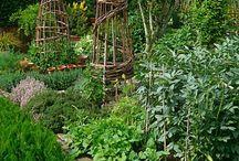 Inspiration edible gardens / kitchen gardens