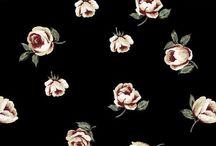 çiçek böcek