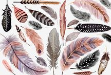 feathers & watercolors