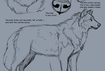 How to draw:Wolves/dogs