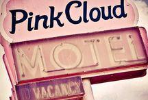 Pink Impressionen