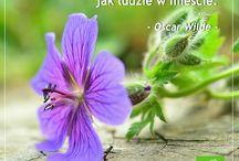 Sztuka odpoczywania z Home & Garden / Ogrodnicza filozofia ;)