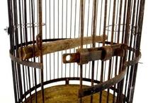 Bird cage / by Ilona Purczeldné Bezzeg