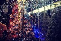 Christmas at Notcutts 2013 / We know it's early, but a few of our lovely customers have snapped our Christmassy areas being set up. How could we resist sharing these sparkly beauties with you?