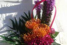 flores para Hector