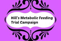 Hill's Metabolic Feeding Trial Campaign /  A complation of pictures from articles I have used for my post . How I am educating the public about how being obese in pets is now an epidemic just like it is in humans.