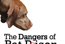 Pet Poisons and Prevention