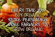 Orgasmic Organic / All things organic