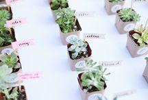 Wedding Venue & Table Ideas