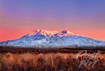 New Zealand Postcards ( North Island) / New Zealand Postcards ( North Island)