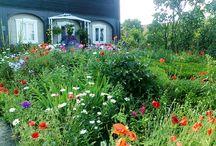 Zahrady, květinové dekorace, květiny