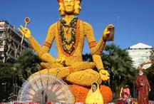 La Fête du Citron®  / Depuis des dizaines d'années, la Fête du Citron® ravit des milliers de spectateurs venus des quatre coins du monde pour admirer les motifs géants tout en agrumes.