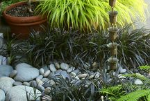 ✿Shade Gardens / Inspirations for luscious shade to part-shade client gardens.