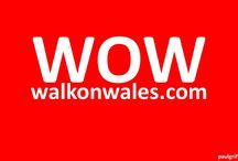 Fitness Events in Wales from Eventsnwales.com / All about fitness events in wales that are advertised or have been advertised on our website
