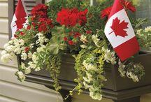 Canada Day 150