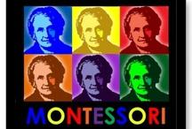Montessori Philosophy / AMS, MEIPN, Local, National, & International #ECMontessori / by Early Childhood Montessori