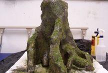 gecko terrariums