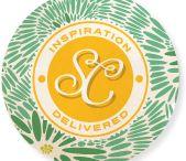 Inspiration Blogs - Scrappy