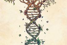 Εικόνες Βιολογίας