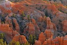 U.S. National Parks / Great ways to spend a family vacation!