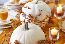 Fall Decorating / by Belinda Abendschein