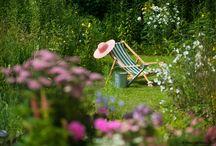 Garten / Projekte, Ideen und Informationen zu deinem Garten.