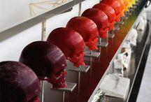 skulls / by Lisa Wright