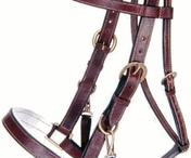 Saddles and Tack / by Cowboy Outfitters