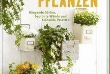 Garten_Pflanzen