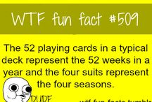 Fun facts / by Jess Seager