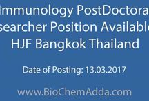 Jobs in Thailand