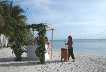 Destination Wedding Sites / Destination wedding sites, venues and places to consider for your destination wedding / by Wander Love Weddings & Travel