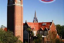 University of Florida / by Kimberly Huckeba Galloway