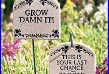 Gardens & signs
