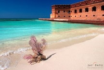 The Keys and Dry Tortugas / by Alia Graves