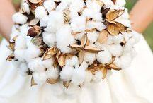 bawełna bukiety