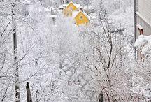 Suomen kaunein talvi