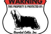 Bearded Collie Signs and Pictures / Warning and Caution Bearded Collie Signs. https://www.signswithanattitude.com/bearded-collie-signs.html